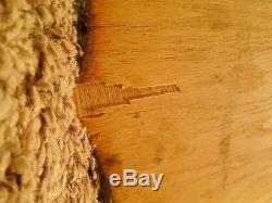 Taxidermy Non Typical Buck Antler & Hoof Gun Rack Wall Mount
